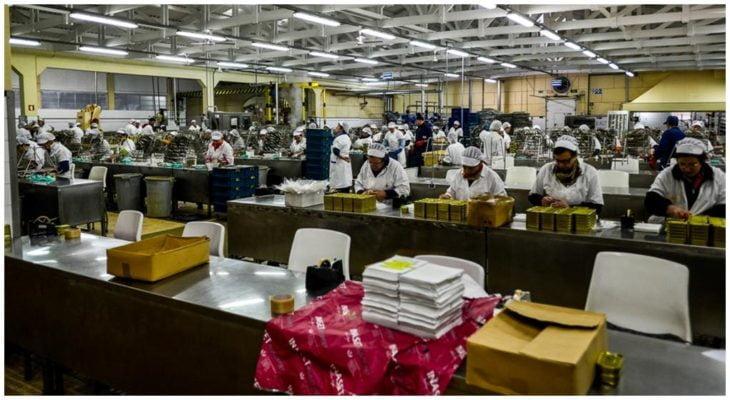 Fabrique - Pinhais - Conserves de sardines du Portugal