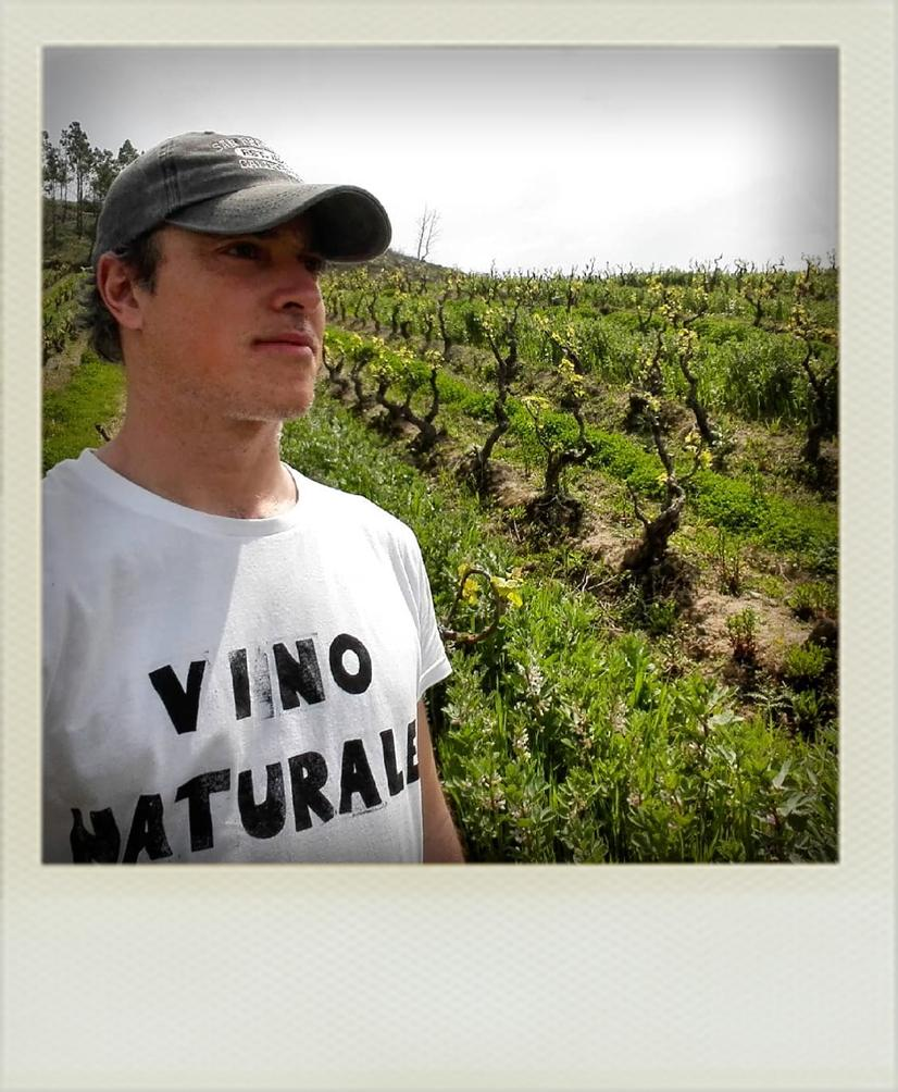 Tiago Teles - Vins naturels bio du Portugal