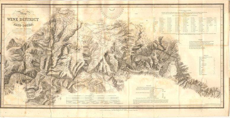 Création du vignoble de l'Alto Douro en 1756