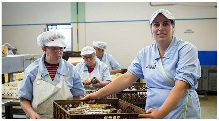 Ouvrières de la conserverie - Santa Catarina - Conserves de thon bonito des Açores