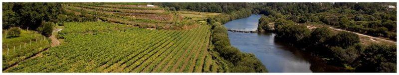 Vallée du Minho - Vignoble du vinho verde