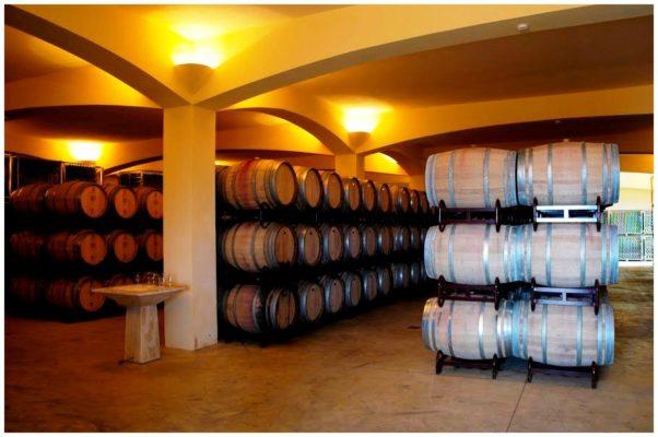 Chai de vieillissement - Monte de Penha - Vins de l'Alentejo Portugal
