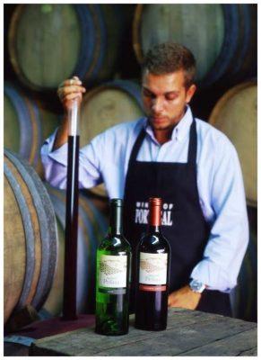 Prélevements de vins nouveaux - Monte de Penha - Vins de l'Alentejo Portugal