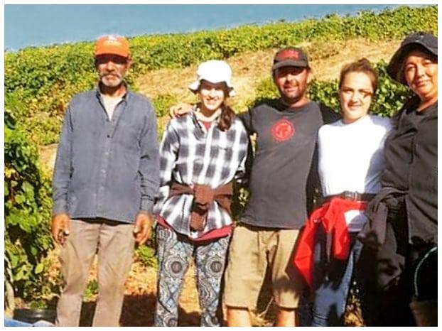 Équipe de vendangeurs - Geraçoes Xisto - Vin du Douro Portugal