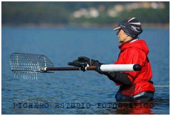 La pêche des crustacés sur les plages galiciennes - Portomar - Conserves de poissons et crustacés - Galice - Espagne