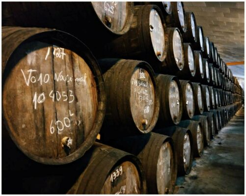 Chais de la Quinta do Noval - Vins du Douro
